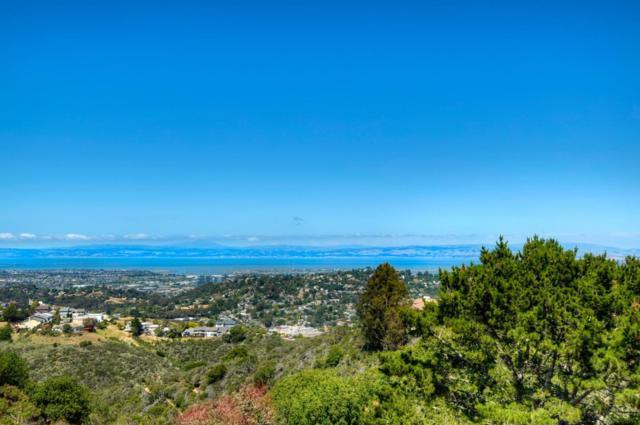 5 Trillium Ln, San Carlos, CA 94070 (#ML81705302) :: The Gilmartin Group