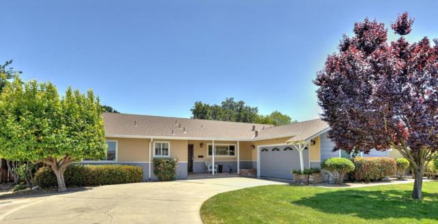 1548 Saint Francis Dr, San Jose, CA 95125 (#ML81705923) :: The Dale Warfel Real Estate Network