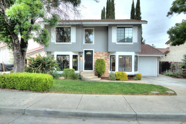 7228 Martwood Way, San Jose, CA 95120 (#ML81707093) :: The Dale Warfel Real Estate Network