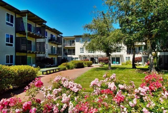 847 N Humboldt St 316, San Mateo, CA 94401 (#ML81709240) :: The Kulda Real Estate Group
