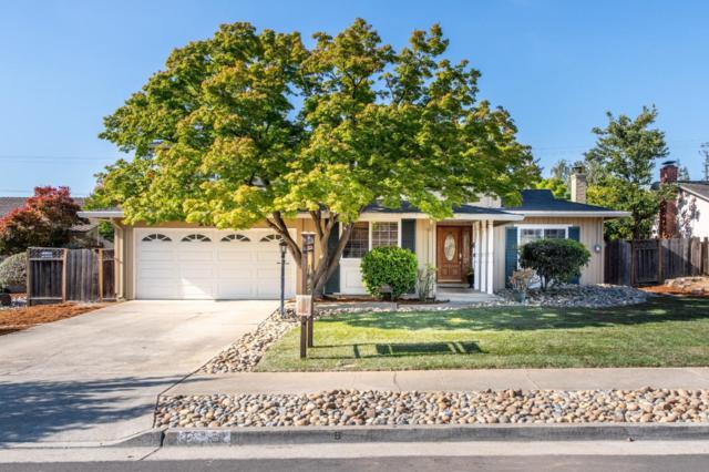 20954 Pepper Tree Ln, Cupertino, CA 95014 (#ML81710951) :: Strock Real Estate