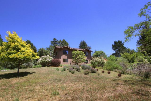 1800 Redwood Rd, Watsonville, CA 95076 (#ML81712785) :: Perisson Real Estate, Inc.