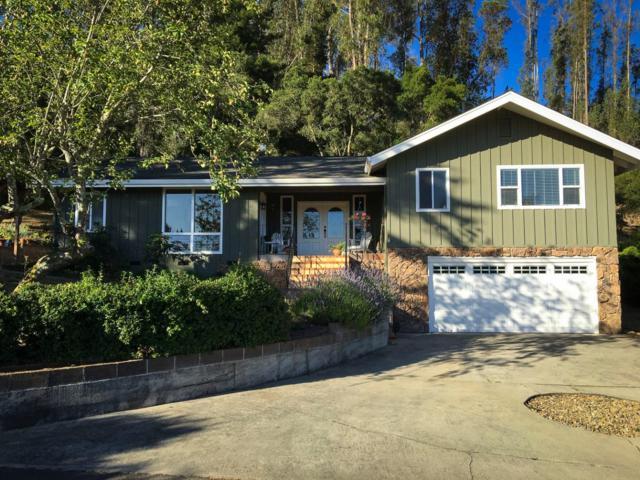 340 Larkin Vista Ln, Watsonville, CA 95076 (#ML81713479) :: The Warfel Gardin Group