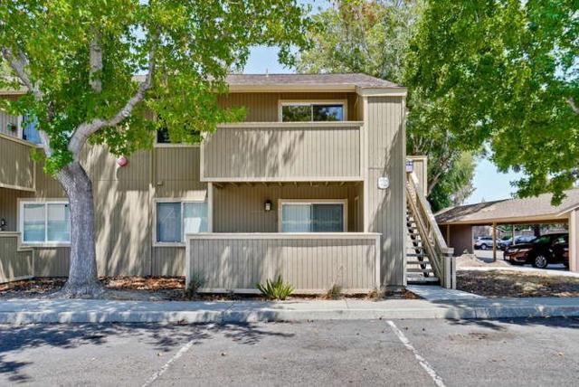37338 Spruce Ter, Fremont, CA 94536 (#ML81714218) :: The Kulda Real Estate Group
