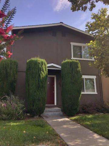 532 Tyrella Ave 11, Mountain View, CA 94043 (#ML81716568) :: The Kulda Real Estate Group