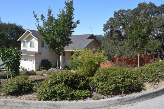 100 Karen Ct, Aromas, CA 95004 (#ML81717420) :: Strock Real Estate