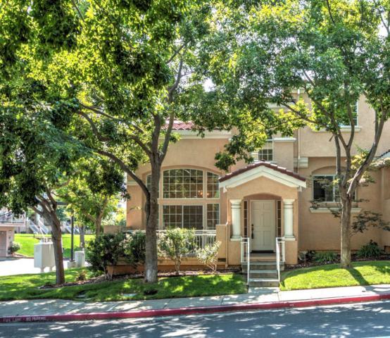 1153 Silver Canyon Dr, San Jose, CA 95120 (#ML81718261) :: Julie Davis Sells Homes