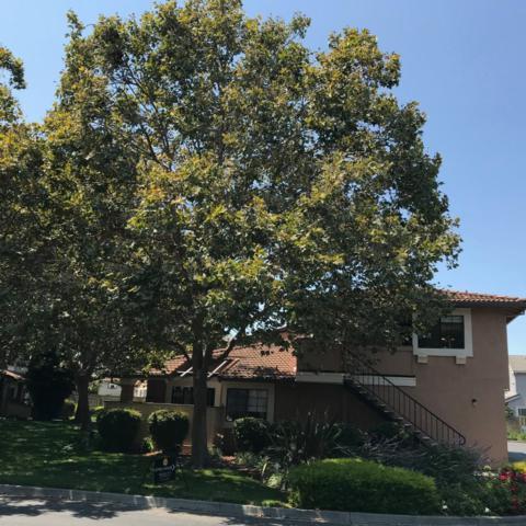 32809 Arbor Vine Dr 26, Union City, CA 94587 (#ML81718632) :: Brett Jennings Real Estate Experts