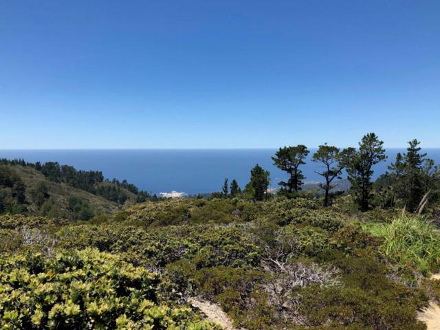 2700 Red Wolf Dr, Carmel, CA 93923 (#ML81720045) :: The Kulda Real Estate Group