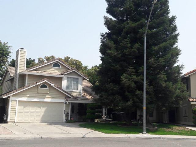 10 Arroyo Seco Way, Tracy, CA 95376 (#ML81720840) :: Strock Real Estate