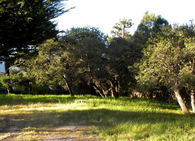 0 6th Avenue Sw Corner Of Carpenter, Carmel, CA 93921 (#ML81722132) :: Julie Davis Sells Homes