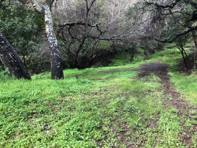 000 El Vanada Rd, Redwood City, CA 94062 (#ML81724797) :: The Gilmartin Group