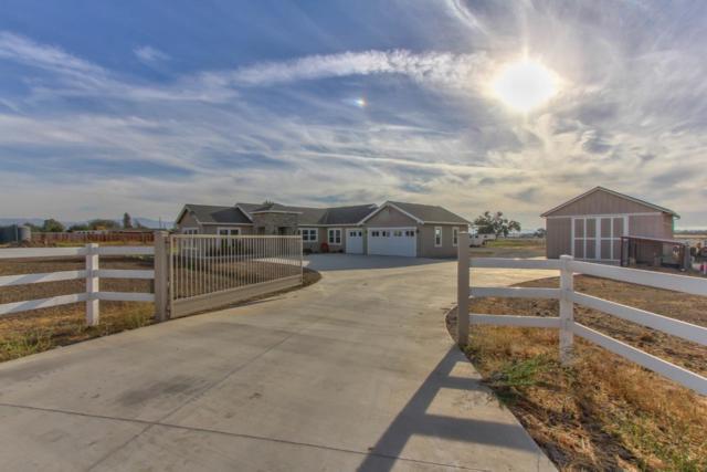 271 Magladry Ct, Hollister, CA 95023 (#ML81725533) :: Julie Davis Sells Homes