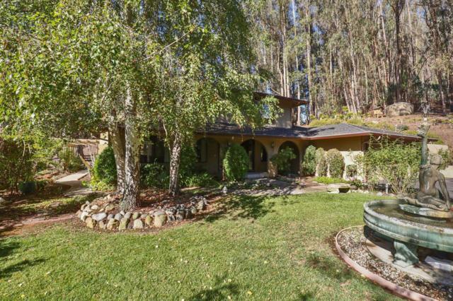219 Merk Rd, Corralitos, CA 95076 (#ML81727836) :: The Kulda Real Estate Group