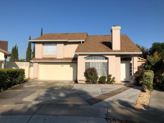 1449 Suzay Ct, San Jose, CA 95122 (#ML81728368) :: Julie Davis Sells Homes