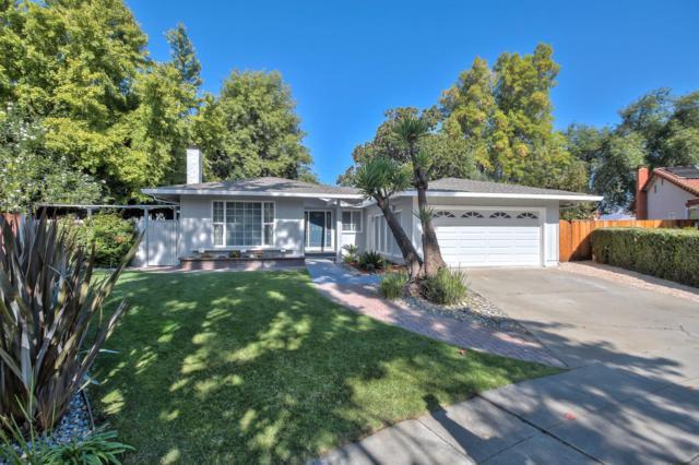207 Colibri Ct, San Jose, CA 95119 (#ML81728605) :: The Warfel Gardin Group