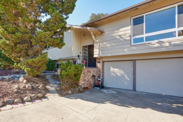 3782 Farm Hill Blvd, Redwood City, CA 94061 (#ML81729354) :: Maxreal Cupertino