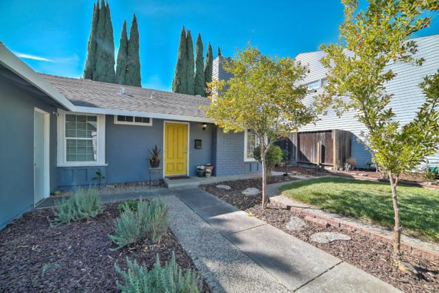 184 Burning Tree Dr, San Jose, CA 95119 (#ML81730088) :: The Kulda Real Estate Group