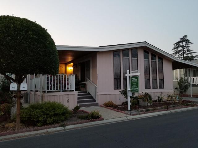 783 Villa Teresa Way 783, San Jose, CA 95123 (#ML81731024) :: The Warfel Gardin Group