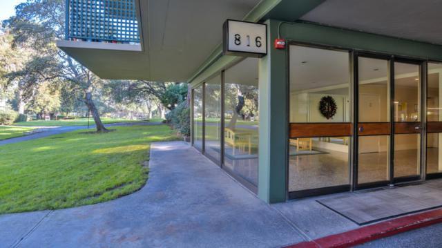 816 N Delaware St 210, San Mateo, CA 94401 (#ML81732480) :: The Warfel Gardin Group