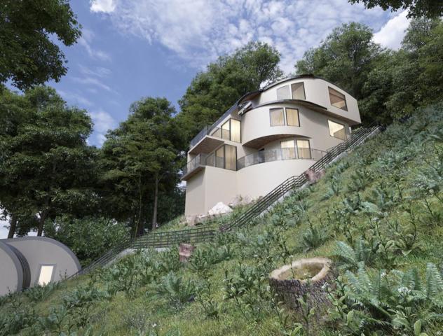 2927 Alhambra Dr, Belmont, CA 94002 (#ML81732679) :: Strock Real Estate