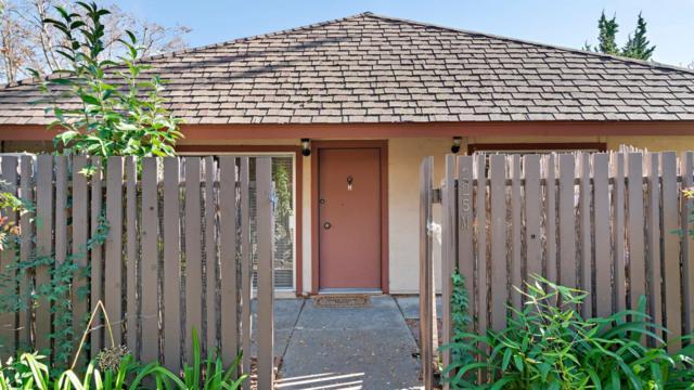 225 Red Oak W Dr M, Sunnyvale, CA 94086 (#ML81732860) :: Julie Davis Sells Homes
