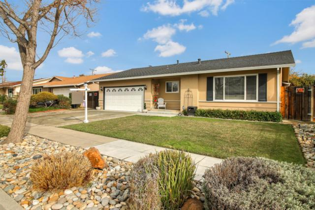 4982 Mise Ave, San Jose, CA 95124 (#ML81735065) :: Keller Williams - The Rose Group