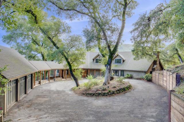 3849 Page Mill Rd, Los Altos Hills, CA 94022 (#ML81735429) :: The Kulda Real Estate Group