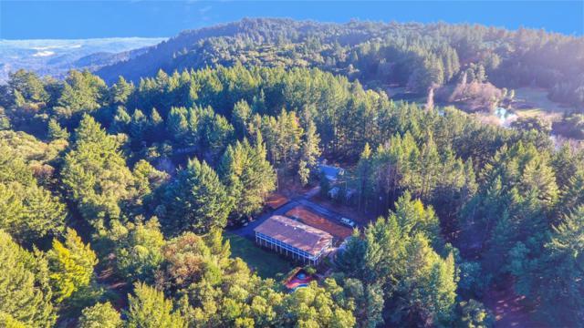 55 Braemoor Dr, Santa Cruz, CA 95060 (#ML81736006) :: The Kulda Real Estate Group