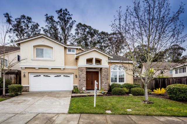 815 Meadow View Dr, Richmond, CA 94806 (#ML81739784) :: Live Play Silicon Valley