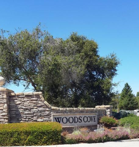 161 Woods Cove Ln, Santa Cruz, CA 95060 (#ML81739957) :: Maxreal Cupertino