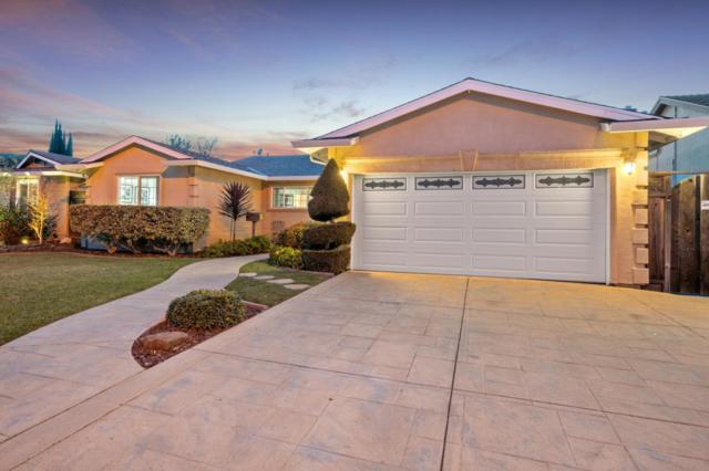 6227 Glider Dr, San Jose, CA 95123 (#ML81742632) :: Perisson Real Estate, Inc.