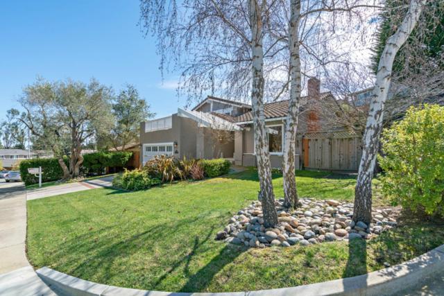 1800 Whitecliff Way, San Mateo, CA 94402 (#ML81743495) :: The Kulda Real Estate Group