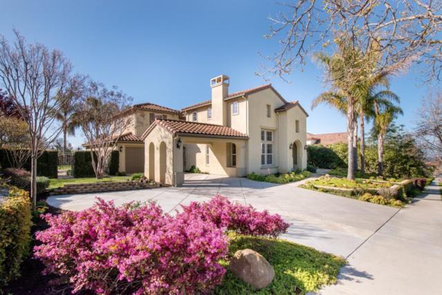 3680 Rose Terrasse Cir, San Jose, CA 95148 (#ML81743648) :: The Warfel Gardin Group