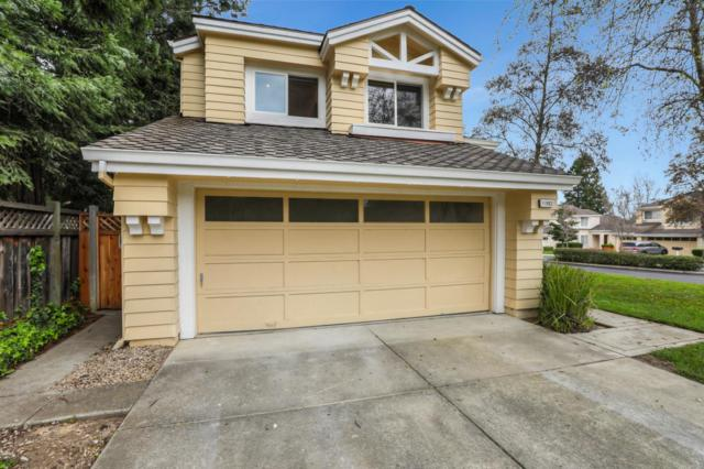 11883 Shasta Spring Ct, Cupertino, CA 95014 (#ML81743892) :: Keller Williams - The Rose Group