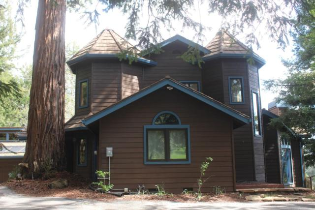 767 Charles Hill Rd, Santa Cruz, CA 95065 (#ML81744646) :: The Kulda Real Estate Group
