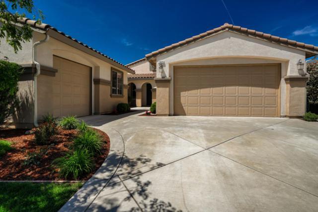 1625 Bradford Way, Morgan Hill, CA 95037 (#ML81748315) :: Julie Davis Sells Homes