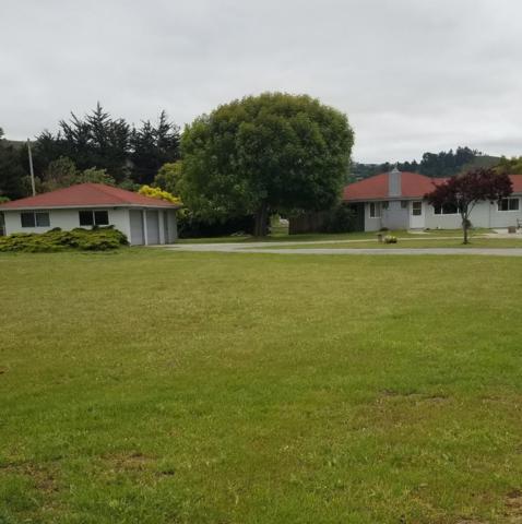 27345 Schulte Rd, Carmel, CA 93923 (#ML81750721) :: Strock Real Estate