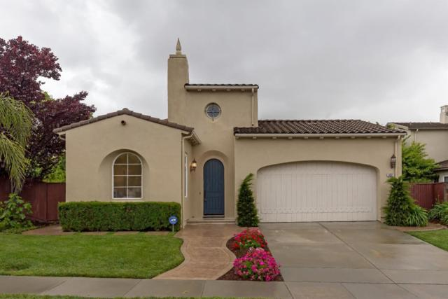 3432 Pinotin Ct, San Jose, CA 95148 (#ML81752057) :: The Warfel Gardin Group