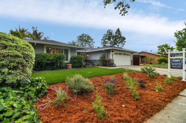 7159 Via Corona, San Jose, CA 95139 (#ML81752253) :: Maxreal Cupertino