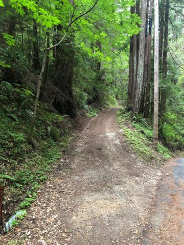 0 Blair Rd, Boulder Creek, CA 95006 (#ML81752501) :: The Gilmartin Group