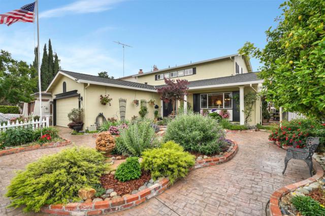 6033 Montalvo Dr, San Jose, CA 95123 (#ML81752612) :: The Warfel Gardin Group