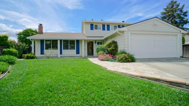3126 Capelaw Ct, San Jose, CA 95135 (#ML81753028) :: The Warfel Gardin Group