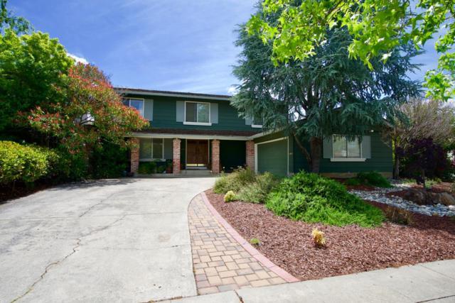 6847 Eldridge Dr, San Jose, CA 95120 (#ML81753065) :: The Warfel Gardin Group