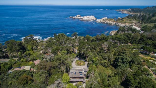246 Highway 1, Carmel, CA 93923 (#ML81753520) :: The Goss Real Estate Group, Keller Williams Bay Area Estates