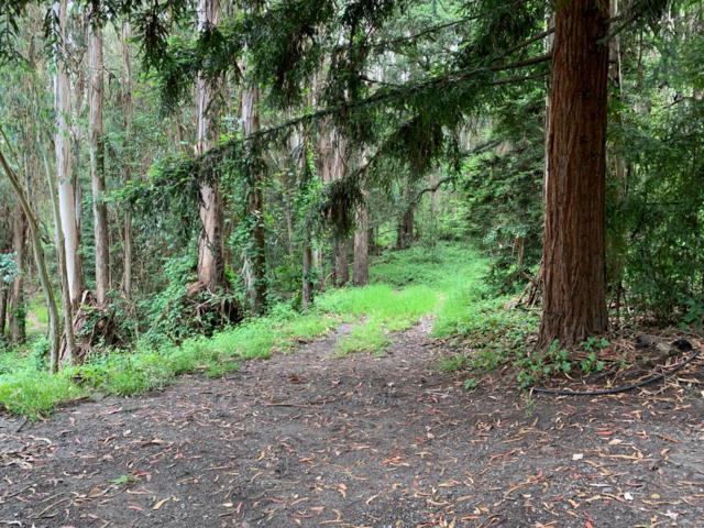 200 Valley View Ln, Watsonville, CA 95076 (#ML81753959) :: Strock Real Estate