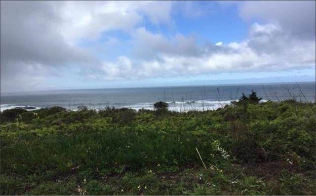 000 Ocean Blvd, Moss Beach, CA 94038 (#ML81757870) :: The Kulda Real Estate Group