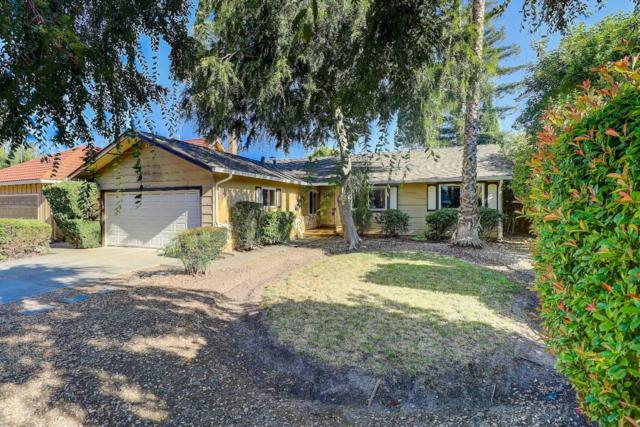 1269 Karie Ann Way, San Jose, CA 95118 (#ML81758107) :: Strock Real Estate