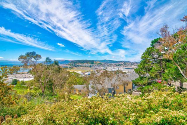 29 Kiska Rd, San Francisco, CA 94124 (#ML81758714) :: RE/MAX Real Estate Services