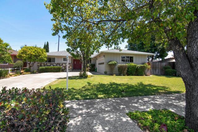 1118 Phelps Ave, San Jose, CA 95117 (#ML81759514) :: Brett Jennings Real Estate Experts